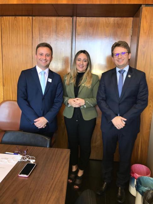 Prefeito Dr.Wilney esteve reunido com deputada Rejane Dias em Brasília