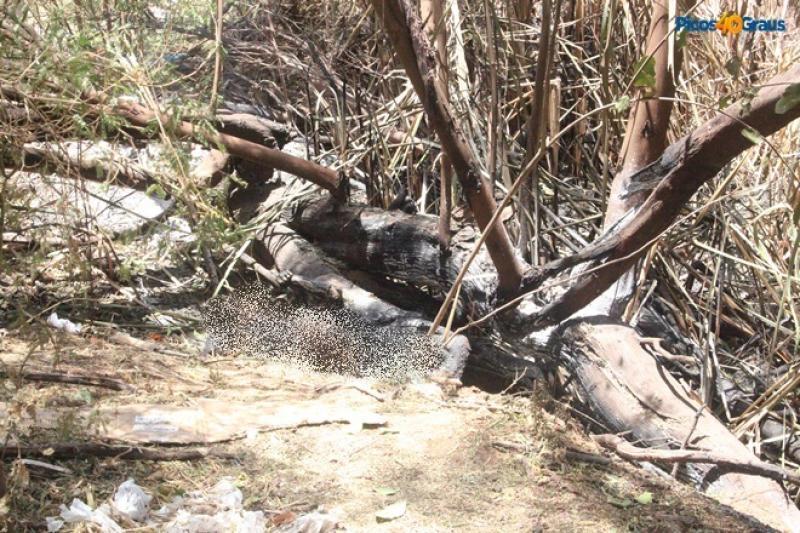 Laudo aponta que mulher foi queimada viva no Piauí