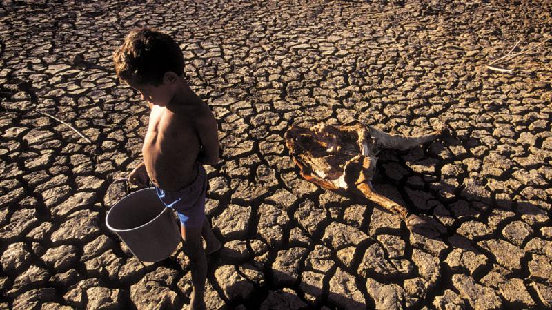 Oposição critica fala de Bolsonaro sobre fome