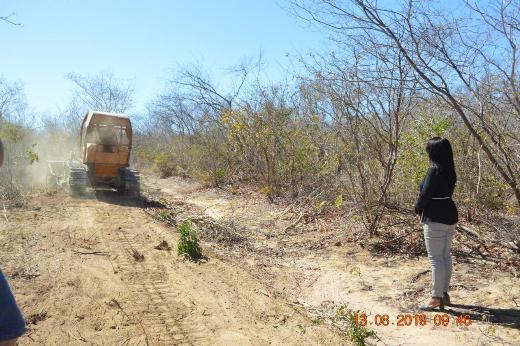 Gestâo da prefeita Doquinha abre nova estrada com acesso a Zona Rural