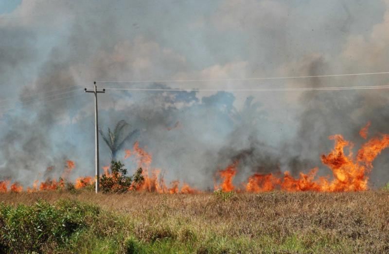 Queimadas prejudicam o fornecimento de energia no Piauí
