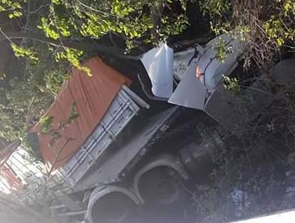 Animal na pista provoca acidente e deixa motorista gravemente ferido