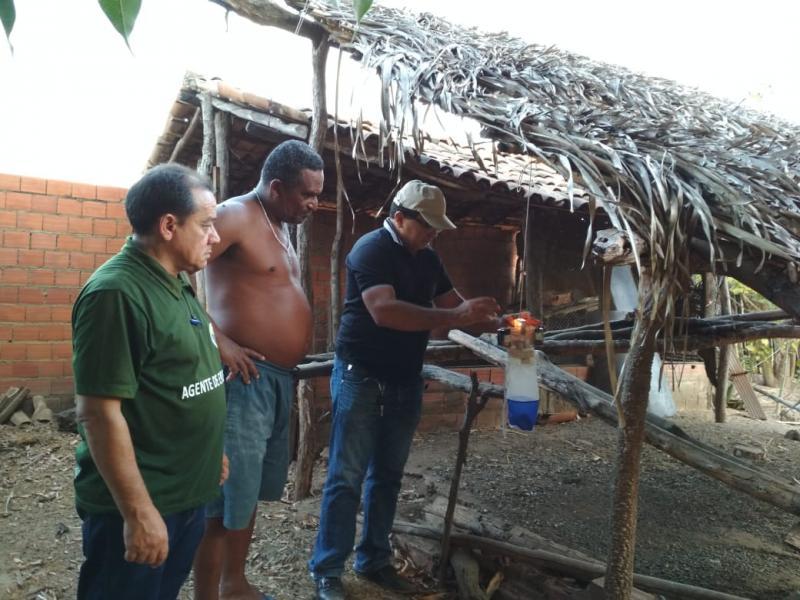 Armadilhas são colocadas  para capturar mosquito transmissor do calazar