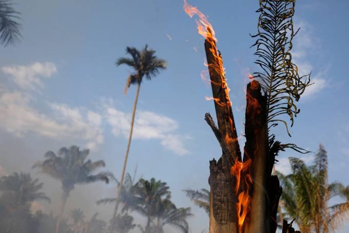"""Governadores são """"coniventes"""" com desmatamento, diz Bolsonaro"""