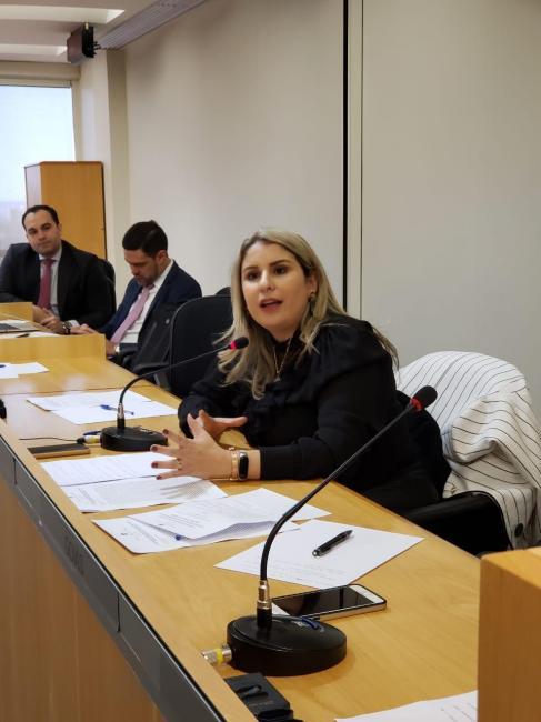 Vice Presidente Alynne Patricio é relatora de importante projeto do CFOAB