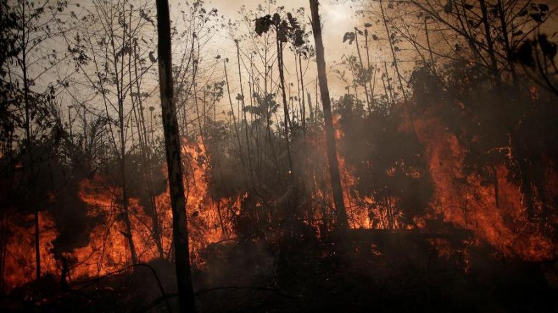 Polícia identifica suspeitos de provocar queimadas na Amazônia