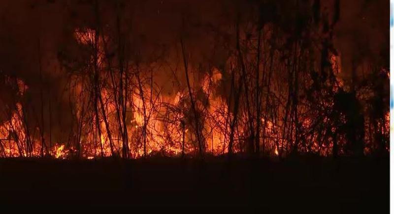 Bolsonaro muda decreto e autoriza queimadas para a agricultura
