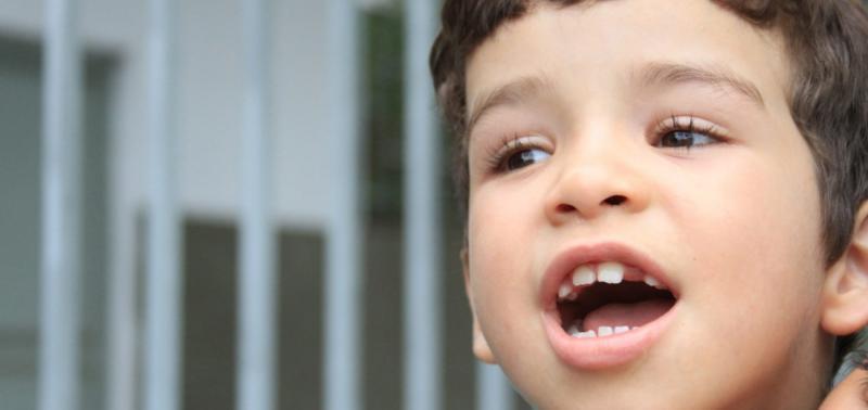 Leis da carteira e prioridade para autistas entram em vigor