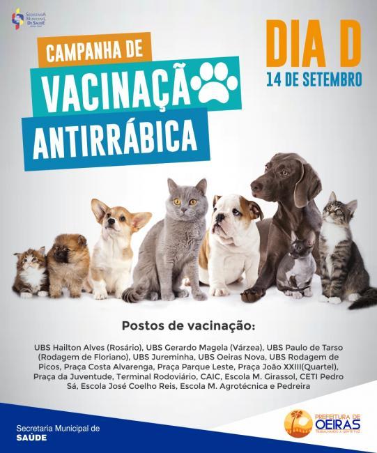 Oeiras terá Dia D da campanha de vacinação antirrábica para cães e gatos
