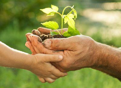 Secretaria Municipal de Meio Ambiente investe na conscientização ambiental