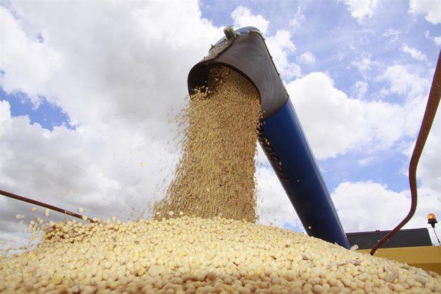 IBGE prevê que Piauí terá novo recorde de safra de grãos