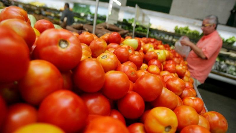 Preço do tomate negociado nas Ceasas está em queda