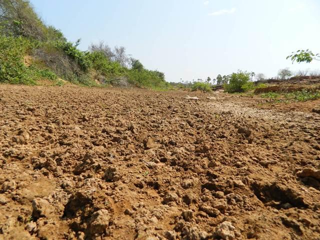 Baixo volume de água do Rio Guaribas preocupa região Sudeste do Piauí