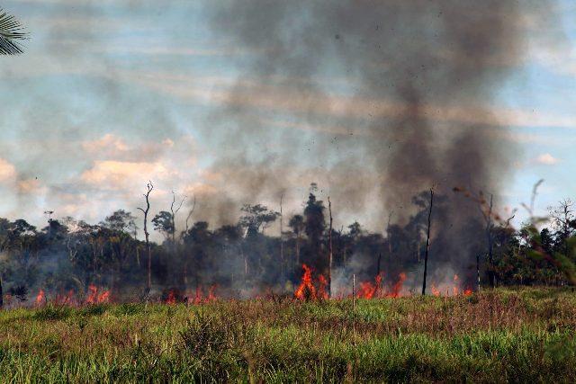 Prefeitura do PI proíbe uso de fogos de artifício para combater incêndios