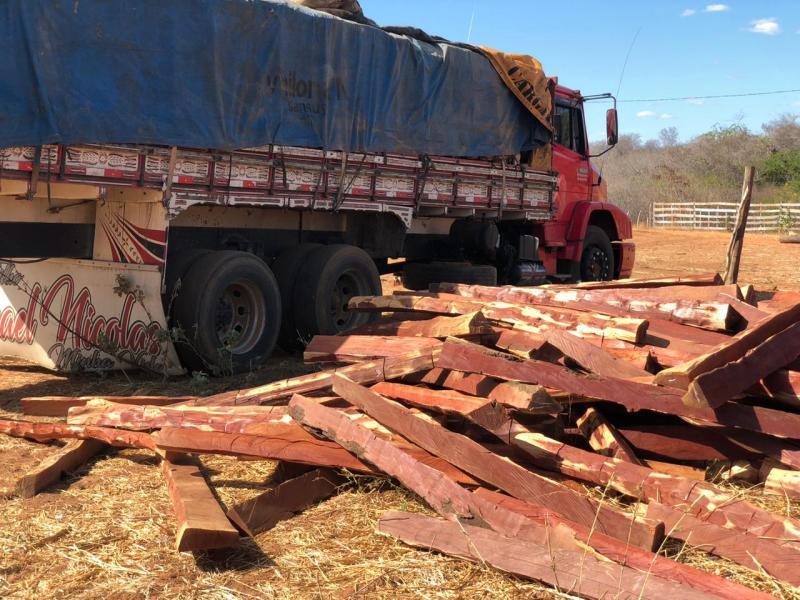 Polícia apreende madeira extraída ilegalmente por trabalhadores