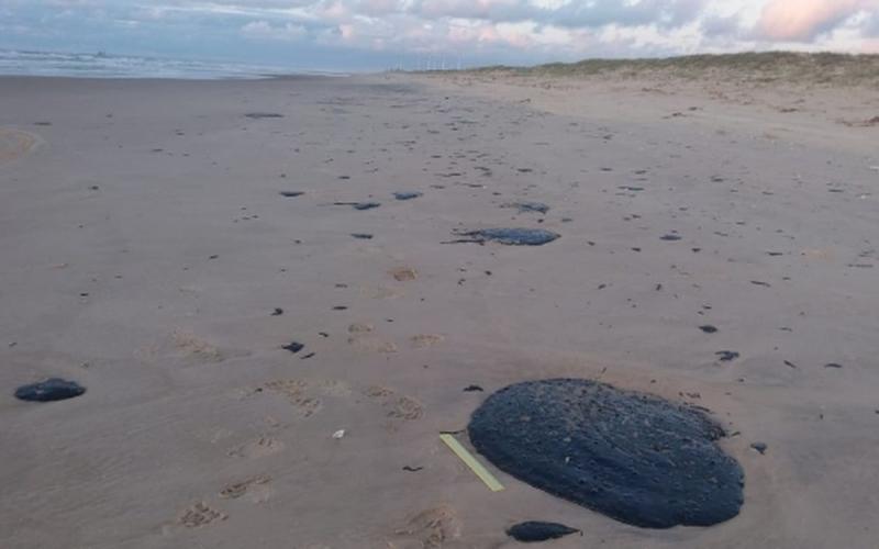 Satélite rastreia origem de óleo que atingiu praias do Nordeste