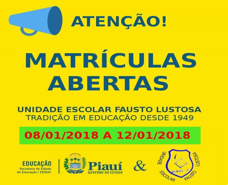 Atenção! Matrículas abertas na rede estadual de ensino em Gilbués dia (08/01)