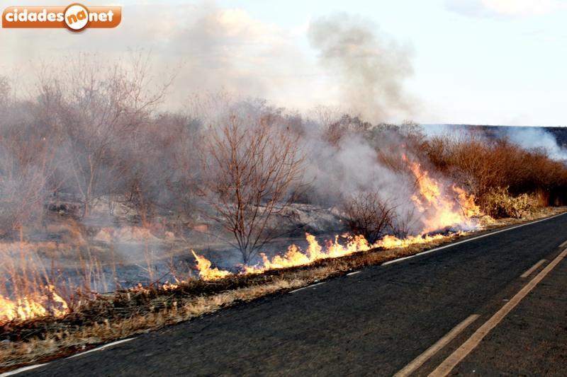 Incêndio atinge município do Piauí há três dias e ameaça residências