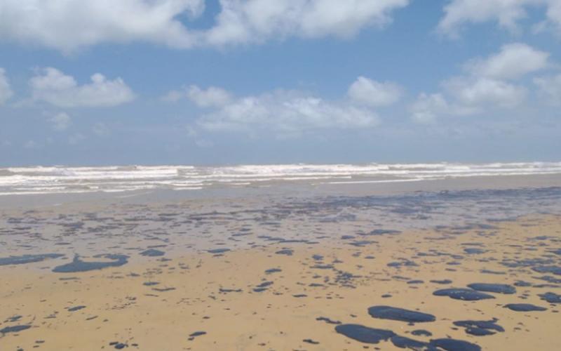 132 praias foram atingidas por manchas de óleo, diz Ibama