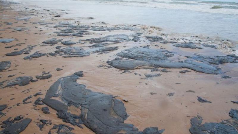Turista pode remarcar viagem a praias atingidas por mancha de óleo