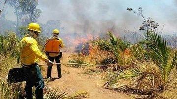 Semar registra em setembro 3.670 mil focos de calor na região Sul do Piauí
