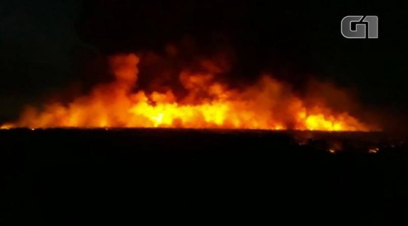 Incêndio volta a atingir região de mata e ameaça residências na zona rural