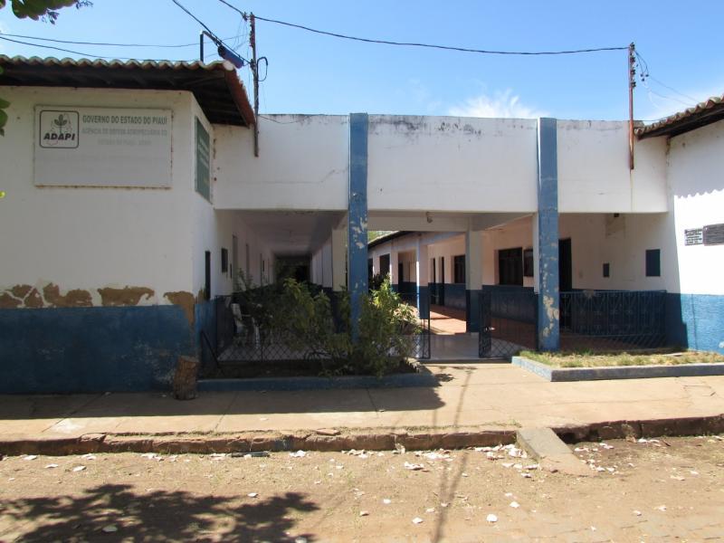 Adapi alerta para focos de peste suína na região de Picos