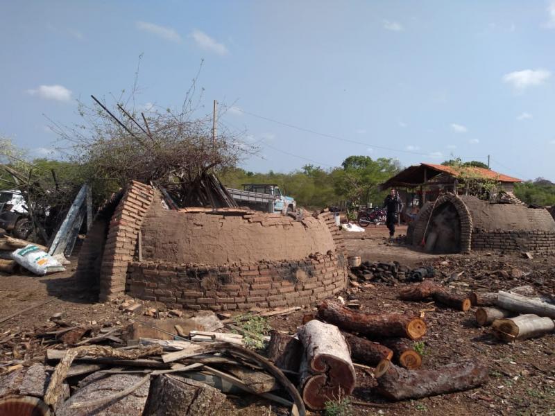 Operação fecha carvoaria clandestina e prende proprietário no Piauí