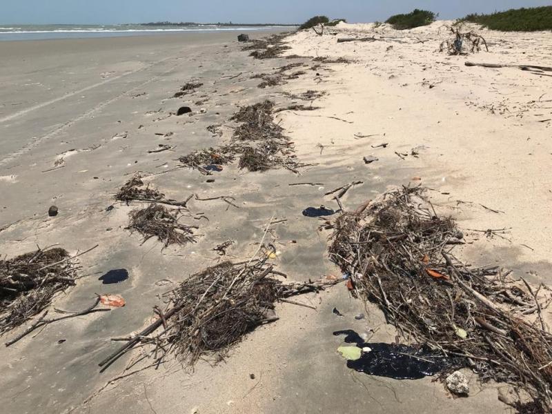 No PI: Cerca de 1,5 tonelada de material é retirado das praias