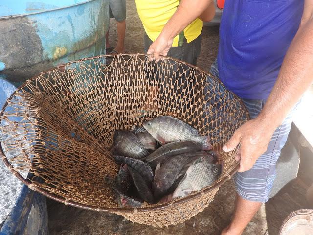 Codevasf realiza encontro sobre piscicultura e pesca em Parnaíba