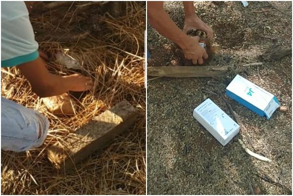 Polícia encontra material furtado de loja enterrado em matagal no Piauí
