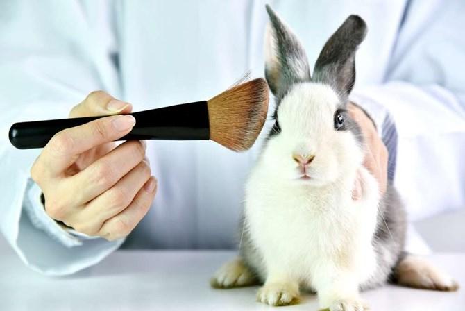 Avon anuncia que vai parar de fazer testes em animais