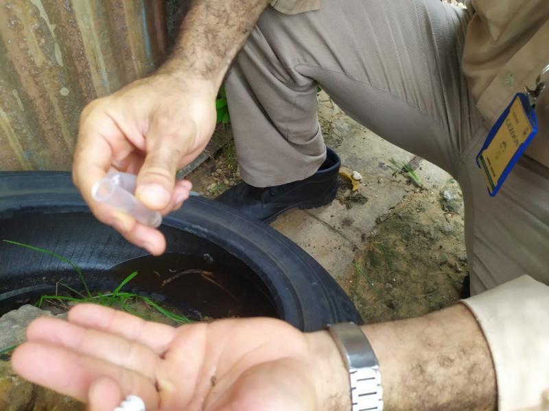 Levantamento: Teresina tem baixo risco de infestação da dengue