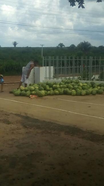 Prefeitura de Olho D'água distribui alimentos agrícolas através do programa Compra Direta