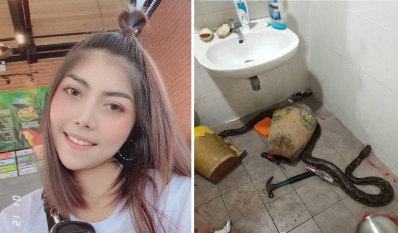 Mulher é picada por cobra ao usar vaso sanitário de casa