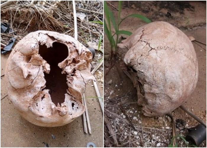 Crânio é encontrado em antiga delegacia do Piauí