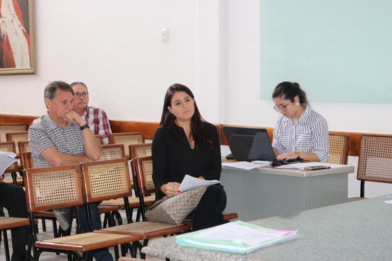 OAB Piauí participa de reunião do COMDEMA