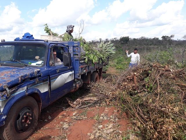 Dom Expedito Lopes inicia compostagem natural de podas de árvores.