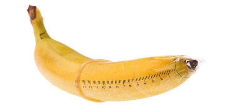 Estudo revela qual é o tamanho do genital considerado normal