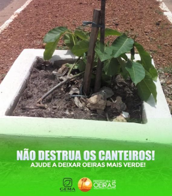 Prefeitura lança campanha pela preservação de canteiros em Oeiras