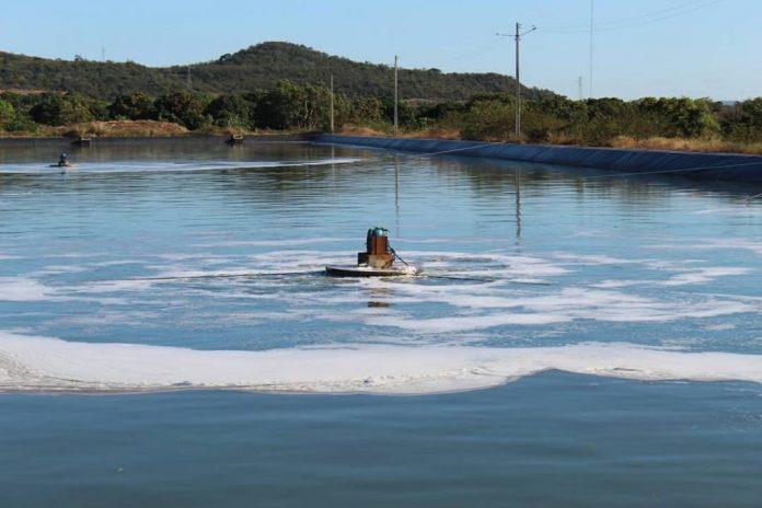 SAAE aumenta a eficiência da estação de tratamento de esgoto em Oeiras