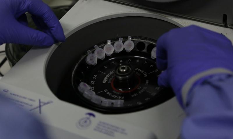 Brasil tem 132 casos suspeitos de coronavírus