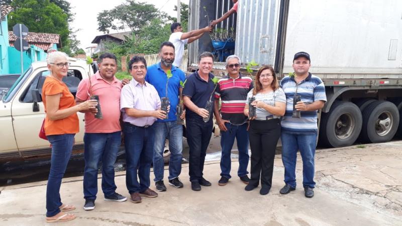 Prefeita Vilma Lima participa de entrega de mudas de caju para agricultores