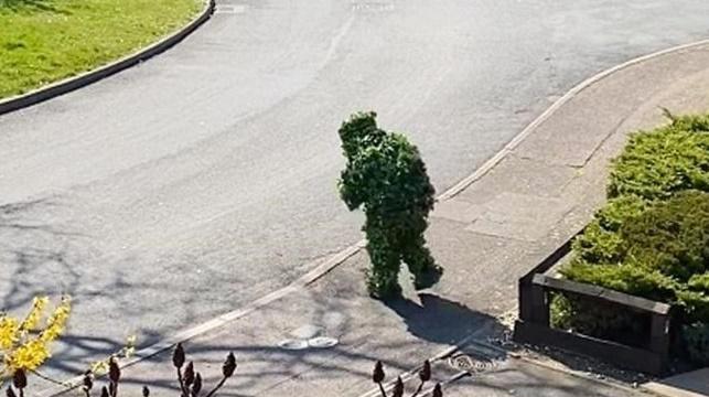 Vizinho fura quarentena vestido de arbusto para fazer compras