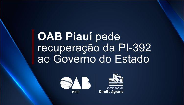 OAB-PI solicita recuperação de trecho da PI 392