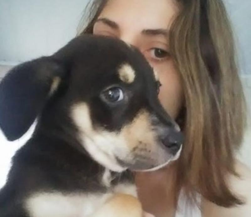 Mulher publica vídeo confessando ter matado cão: