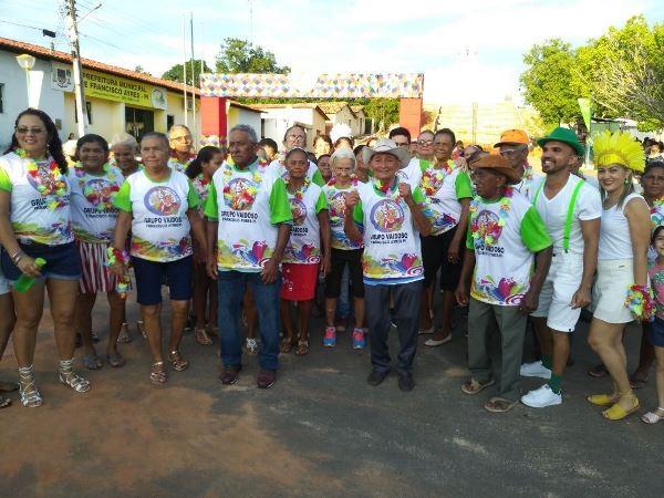 Carnaval da 3ª Idade é Realizado em Francisco Ayres