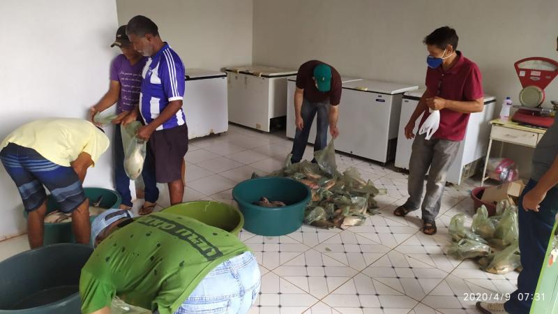 Prefeitura de Colônia do Gurgueia distribui peixe na Semana Santa