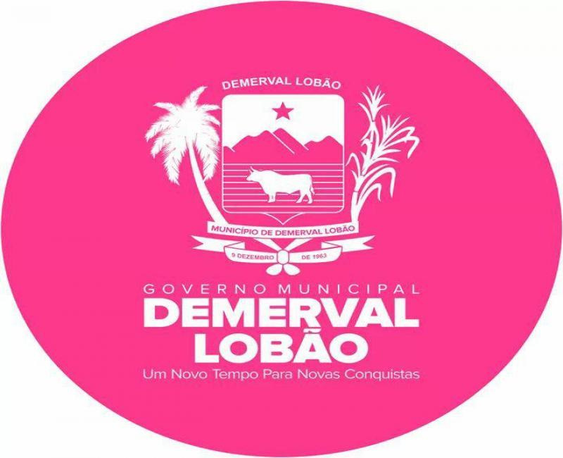 Prefeitura de Demerval Lobão promoverá grande festa para crianças