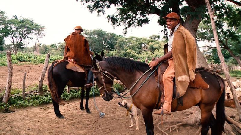 Profissão centenária de vaqueiro é passada de pai para filho no Piauí
